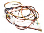 Wiring Harness 134605800